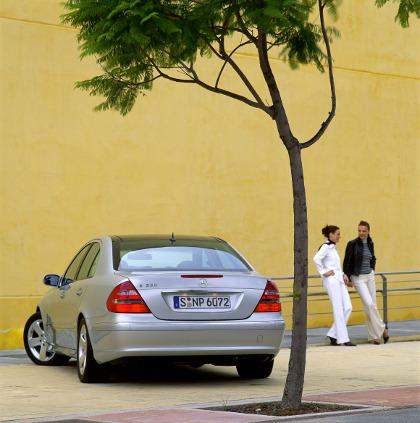 Mercedes_benz_w420_2.jpg
